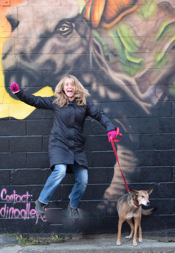 cães-adotados-celebrando-o-novo-ano-9