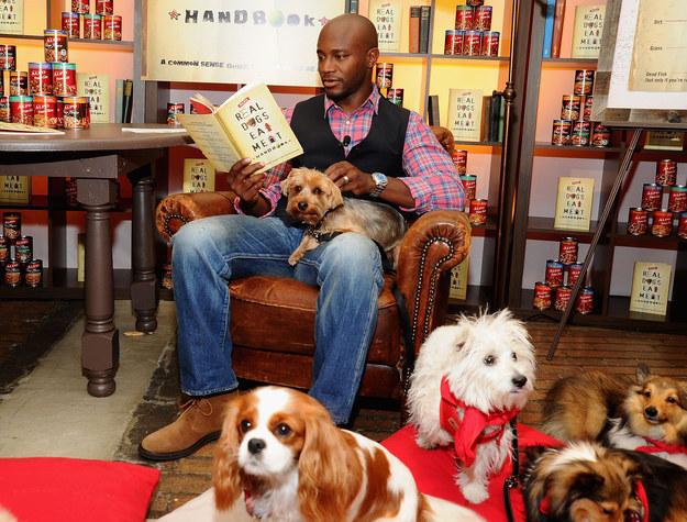 cachorros-com-seus-livros-11