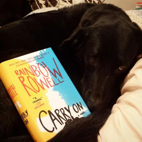 cachorros-com-seus-livros-3
