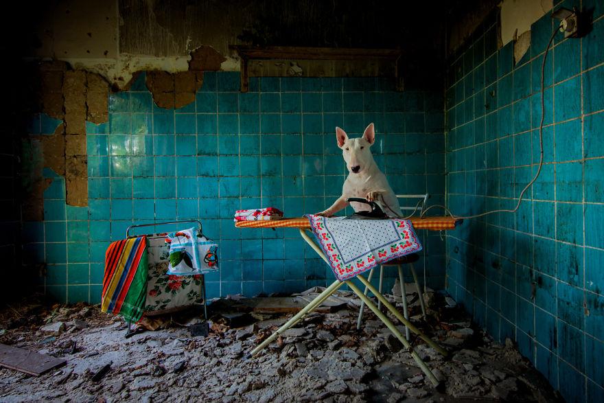 cachorros-e-dono-exploram-lugares-abandonados-da-europa-1