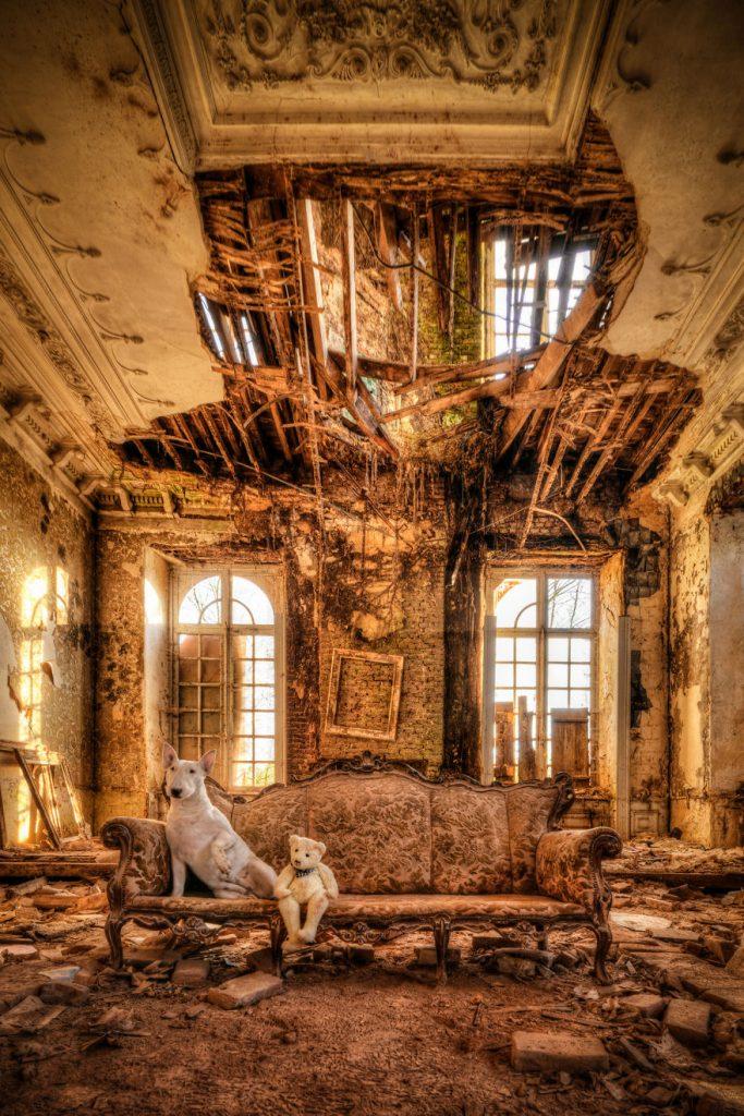 cachorros-e-dono-exploram-lugares-abandonados-da-europa-16