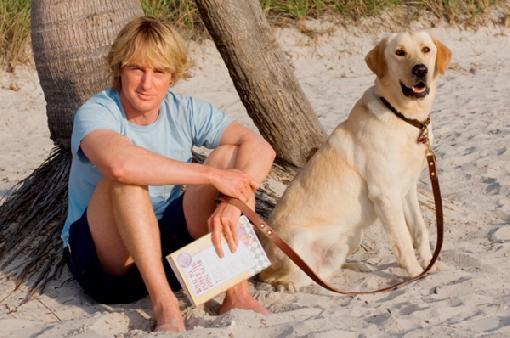 cachorros-famosos-dos-filmes-3