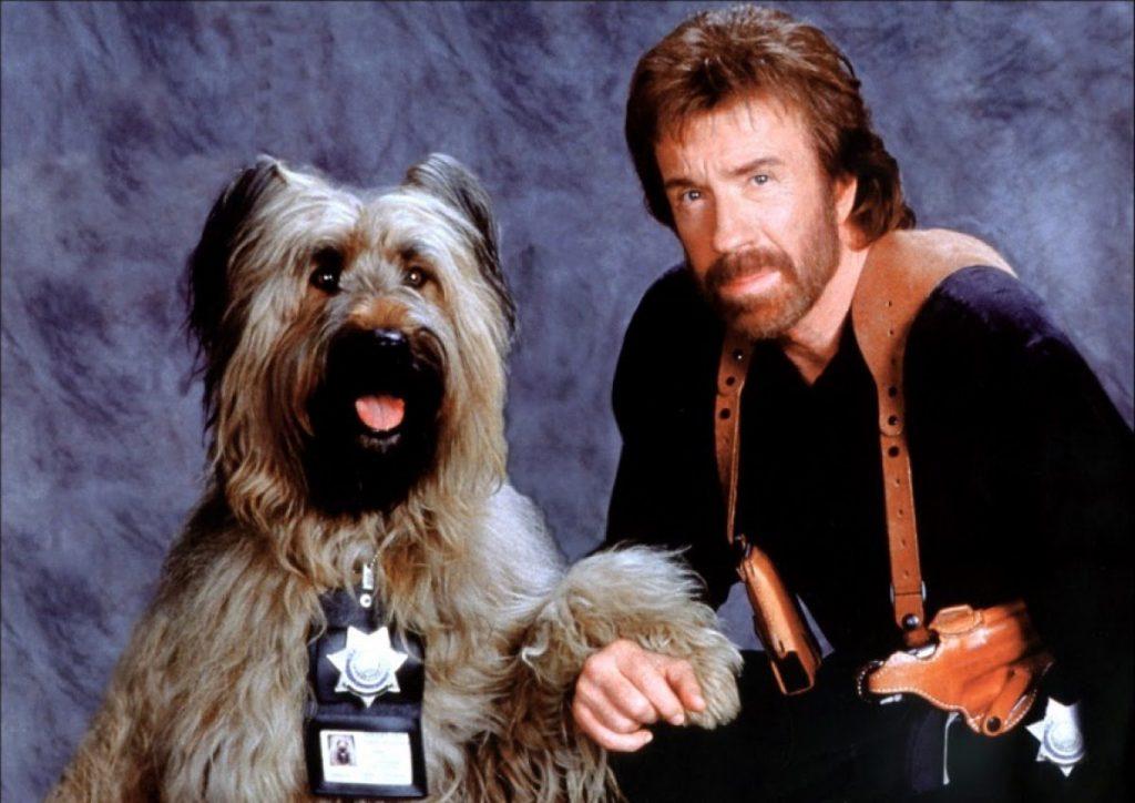 cachorros-famosos-dos-filmes-6