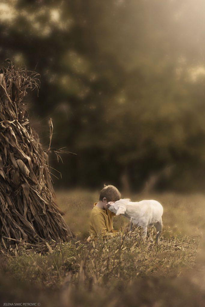 garoto-e-seus-cachorros-resgatados-2