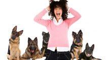 Medo de cachorro cinofobia